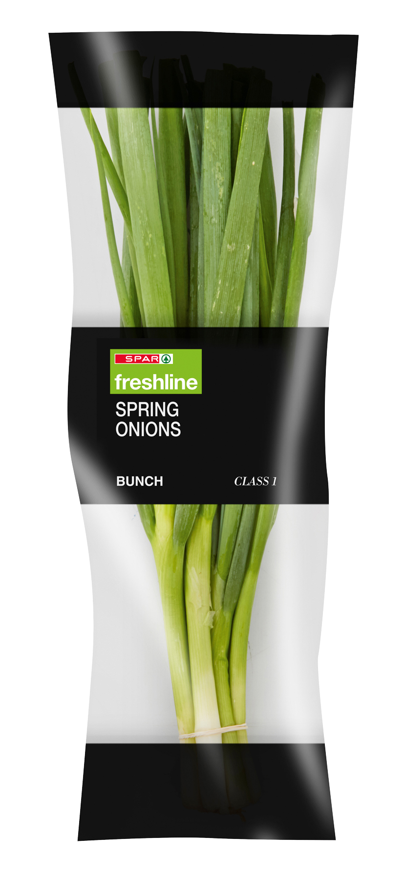 freshline spring onions - bunch