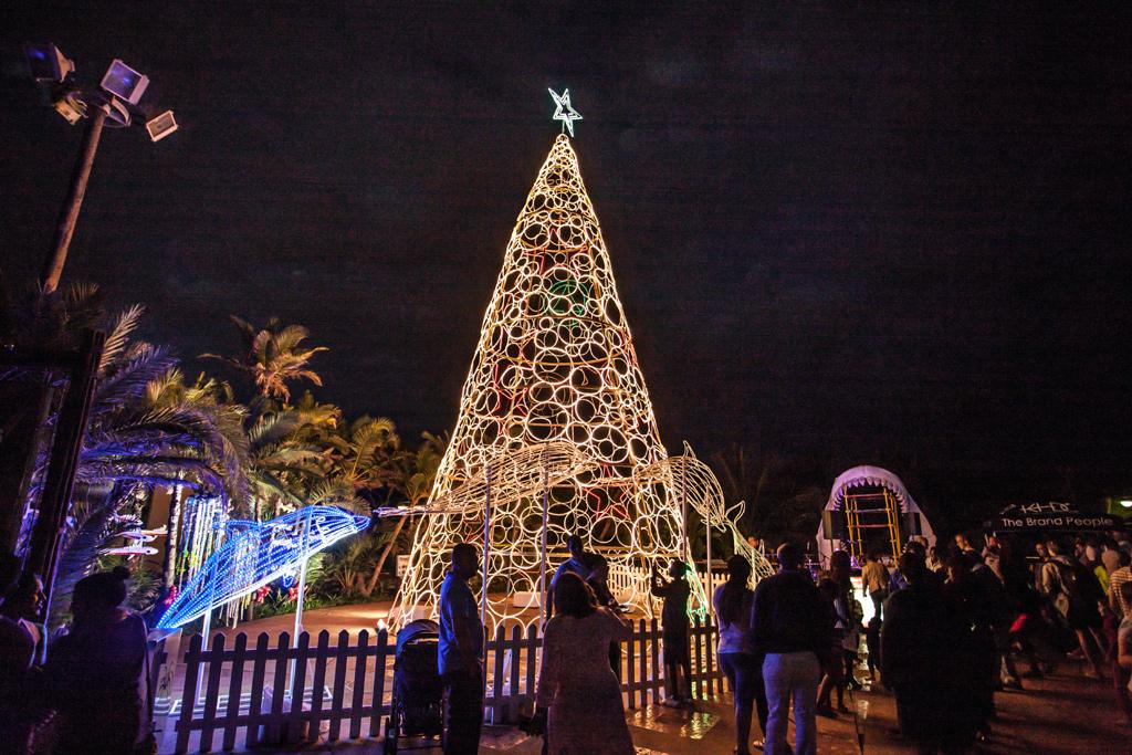 Giant Christmas Tree for Durban beachfront